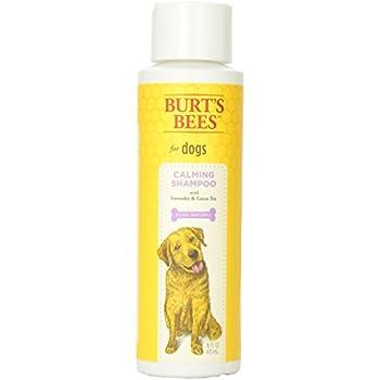 Burt S Bees Lavender Dog Shampoo