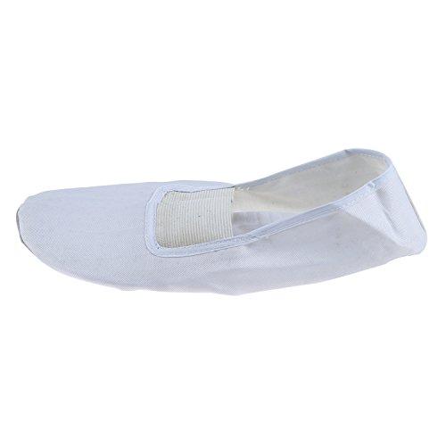 Schuhe - TOOGOO(R) Weiss Damen Ballett Tanz Tanzen weich Schuhe US Sz 6.5