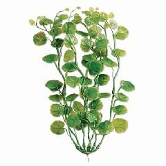 (Tetra 19118 Water Wonders Fresh Water Plant Cardamine, 9-Inch)