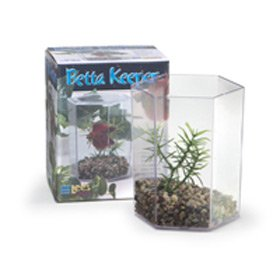 Lee s aquarium betta hex with lid gravel for Hexagon fish tank lid