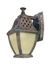 - Troy Lighting BF2081BI Biscayne - One Light Outdoor Small Wall Lantern, Biscayne Finish with Dusty Amber Glass