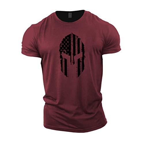 GYMTIER Mens Bodybuilding T-Shirt - Spartan USA Flag - Gym Training Top
