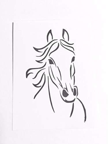 Horse Trailer Bumper Pull