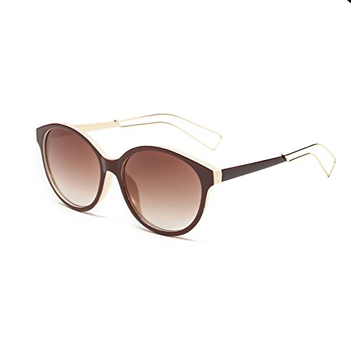 [Double FNT Classic Casual Style Colored Hollow Arm Mirrored Vintage Round Sunglasses] (Homemade Stilt Costumes)