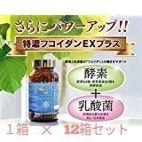 特濃フコイダンEXプラス (特濃100にさらに野草酵素殺菌乳酸菌配合) 12個セット B01NBKJOJI