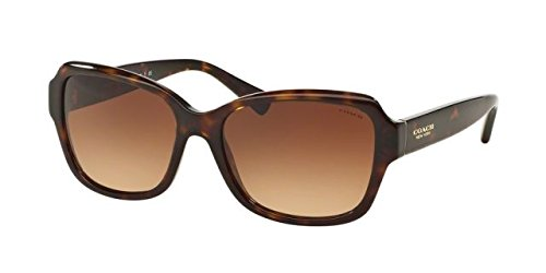 Coach Womens Sunglasses (HC8160) Tortoise/Brown Acetate - Non-Polarized - 56mm