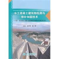 detection-and-repair-of-hydraulic-concrete-structure-reinforcement-technologies-the-eleventh-nationa