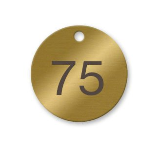 Numbered Solid Brass Valve Tags - Pack of 25 (51-75)