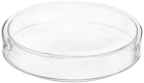 American Educational Flint Glass Culture Petri Dish, 160mm Diameter, 30mm Height (Bundle of 5)