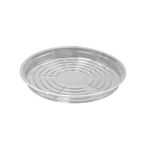 (TRUEDAYS 12 Inch 5 Pack Clear Plant Saucers Flower Pot Tray Excellent for Indoor & Outdoor Plants )