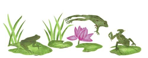 Designer Stencils Frog and Lily Pads Wall Stencil SKU #2627
