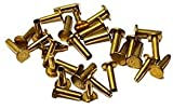 """R&DOG For Cutlery Rivets 5/16"""" x 5/8"""" Knife Making"""