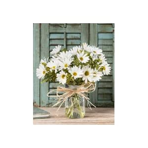 Petals Farmhouse Daisies Silk Arrangement - White 2