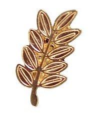 Acacia Sprig Masonic Freemason Lapel Pin Akasha - The Masonic Exchange