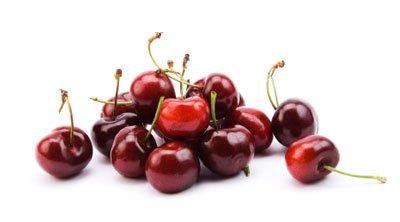 Dwarf Black Tartarian Cherry Trees