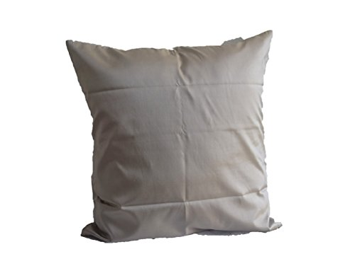 Lotus House Lite Brown Silk Pillow Case by Lotus House