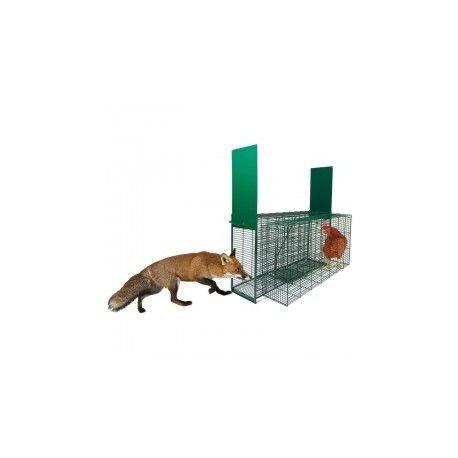 COPELE - Jaula zorros pequeña y grande, pequeño: Amazon.es: Jardín
