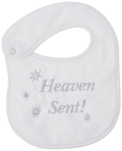 Raindrops Heaven Sent Embroidered Bib, Grey