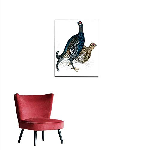 longbuyer Wall Paper Black Grouse - Hand Coloured Engraving Mural ()