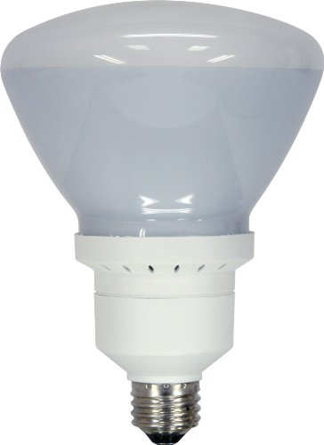 GE Lighting 60314 Energy Smart Bright from the Start CFL 26-watt, 1300-lumen R40 Indoor Flood Light Bulb with Medium ()