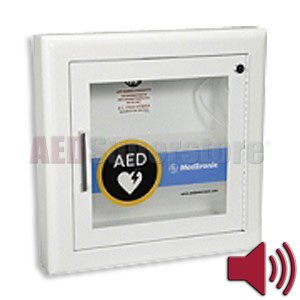 Cabinet Semi Recessed Fire Rated with Alarm & Rolled Edges - 11210-000026 by Physio-Control