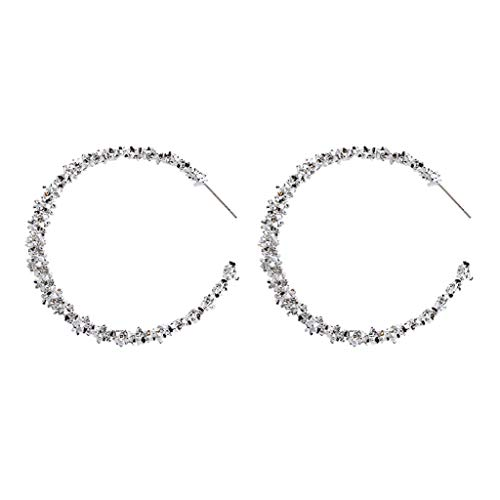 Personality Simple Geometric Double Layer big Round Prickly earrings jewelry (White Gold Cz Leverback Earrings)