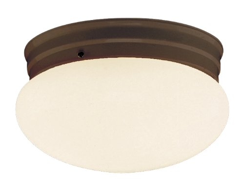 Opal Glass Ceiling Fixture (Trans Globe Lighting 3620 ROB Indoor  Dash 10