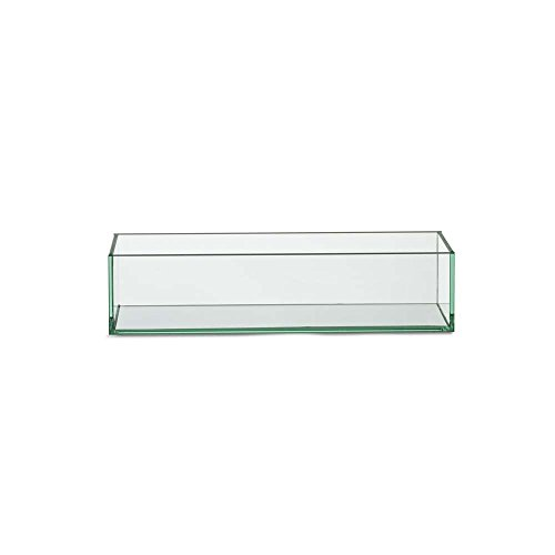 (Design Ideas 872641 Vision Trough Vase, Clear)