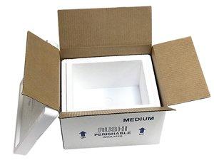 Medium Foam Cooler Mailer, Insulated Shipper, 9 Quarts, 10.5