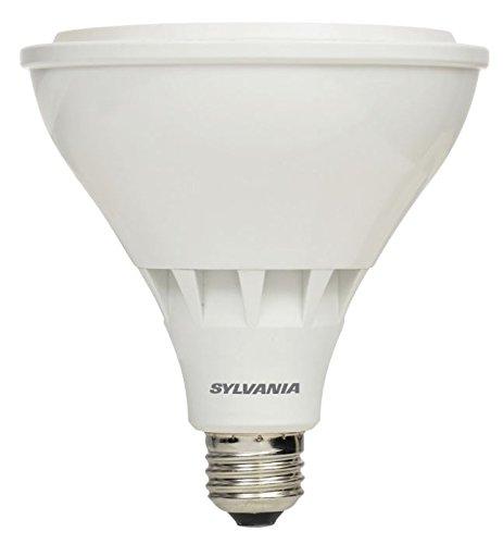 daylight night light bulb buyer's guide