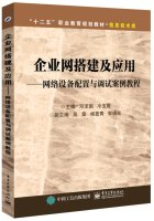Build enterprise networks and applications: network equipment configuration and debugging case tutorial(Chinese Edition) PDF