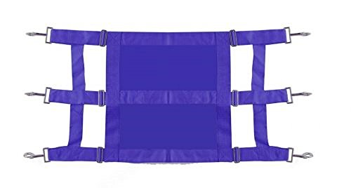 Showman Heavy Duty Webbed Nylon Solid Front Stall Guard Horse Pony Adjusts 36-48 (Royal Blue) by Showman