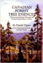 Book Canadian Forest Tree Essences - Vibrational Healing Through the Natural Resonance of Trees