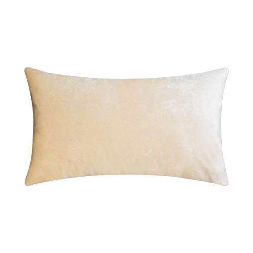HOME BRILLIANT Luxury Rectangle Lumbar Velvet Decorative Throw Pillow Cover for Indoor Outdoor Decoration, 12