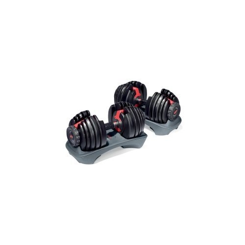 BowflexSelectTech 552 Adjustable Dumbbells (Pair), Body Tower, Series 3.1 Bench, and Stand