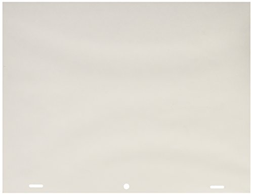 Canson Artist Series Acme Punched Translucent Animation Paper, 10 Frame, 20 Pound, 8.5 x 11 Inch, 100 Sheets by Canson