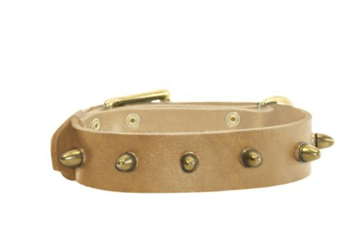 Bullet Swiss (Dean & Tyler The Bullet Leather Collar for Dogs, 28 to 32-Inch by 1-1/2-Inch, Tan)
