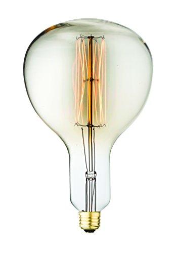 Aspen M18002 Medium Size E26 Filament Edison Antique Vintage Oversize 60W 160 Lm Light Bulb with 3000 Hrs. of Life