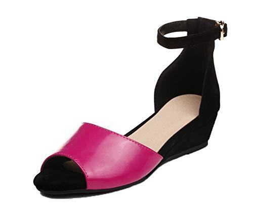 AalarDom Women's Buckle Patent Leather Open-Toe Low-Heels Solid Sandals, TSDLH007545, Rosered, 36 by AalarDom
