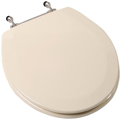 Toilet Seat Brushed Chrome Hinges - 2