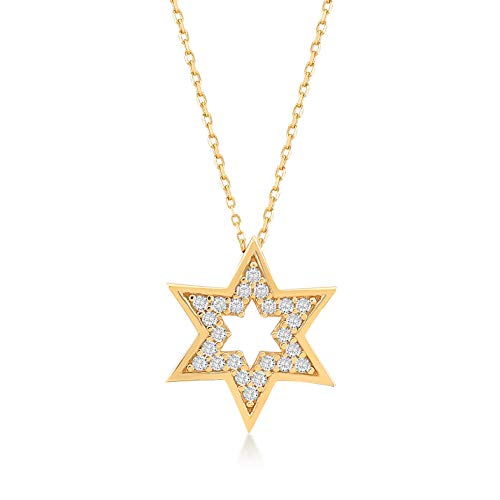 GELIN 14k Solid Gold CZ David Star Pendant Chain Necklace for Women, 18