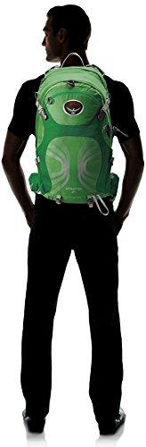 Osprey Stratos 24 daypack Gentlemen M/L green 2016