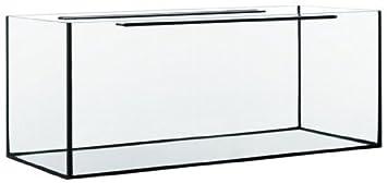 Acuario rectangular Glass Max 100 x 40 x 50 cm: Amazon.es ...