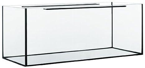 Acuario rectangular Glass Max 100 x 40 x 50 cm: Amazon.es: Productos para mascotas