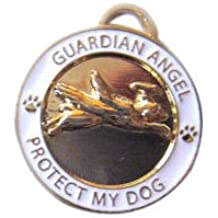 Luxepets Guardian Angel Dog Charm, Gold