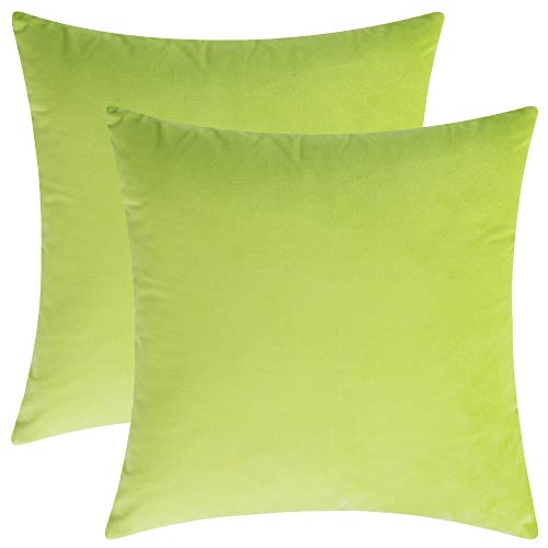 (Rythome Set of 2 Comfortable Throw Pillow Cover for Bedding, Decorative Accent Cushion Sham Case for Couch Sofa, Soft Solid Velvet with Zipper Hidden - 18