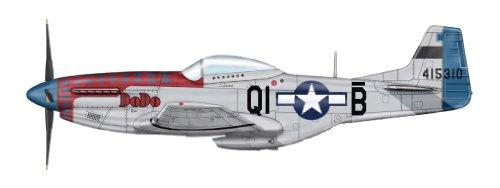 1/48 アメリカ軍 P-51D マスタング DoDo スペシャル HA7720A