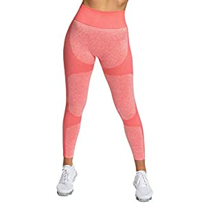 Pau1Hami1ton Seamless Legging Femme Pantalon de Sport Yoga Fitness Gym Pilates Taille Haute GP-15