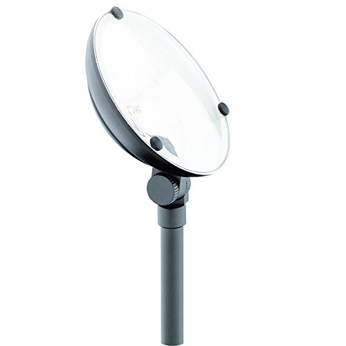 Malibu C Low Voltage Landscape Lighting, 20 Watt Metal Floodlight Outdoor Spotlight Waterproof Lighting for Driveway, Yard, Lawn, Flood, Garden, Outdoor Lighting 8301-9502-01 by Malibu C