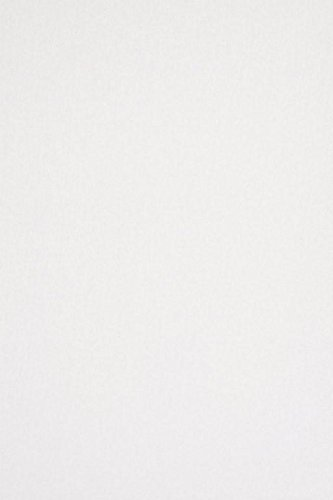 Backdrop Alley White Solid Muslin Photo Background, 10' x 12'